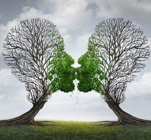relatietherapie eft